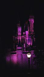 CINDERELLA_CASTLE_NIGHT_2.jpg