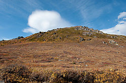 20090909_124813_Landscape_in_Denali_National_Park.jpg