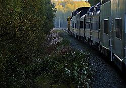 Train_to_Denali_1a.jpg