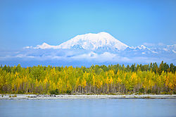 View_from_Train_to_Denali_1.jpg