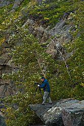 Jay-on-a-cliff_7056.jpg