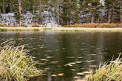 Eastern-Sierra_Wier-Pond.jpg