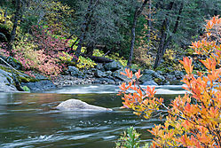 Merced-River-Yosemite-2.jpg
