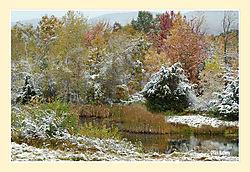 Mary-Edwards-Fall-Snow8.jpg