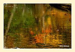 Salmon-Brook1.jpg