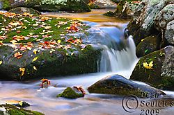 Hazel_River_038.jpg