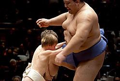 Sumo_Fun.jpg