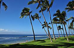 Maui-Beach.jpg