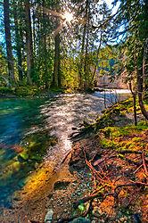 Cameron_River.jpg