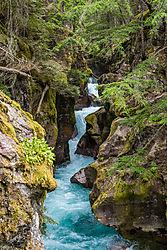 Glacier_Park_2015-130.jpg