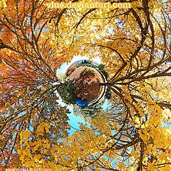 Butterscotch_by_Vlue.jpg