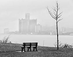 Misty_Detroit.jpg