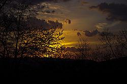 sunset115.jpg