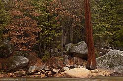 Yosemite-7943.jpg