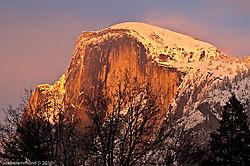 Yosemite-8338.jpg
