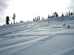 Snowfields_Feb6.jpg