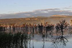 Lake_Fyans_Grampians_2013_1.jpg