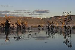 Lake_Fyans_Grampians_2013_2.jpg