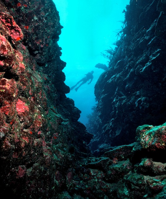 Plateau_Reef_South_of_Briland1