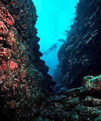Plateau_Reef_South_of_Briland1.jpg