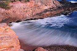 Point_Lobos_89.JPG