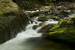 South_Fork_Willow_Creek_1.jpg