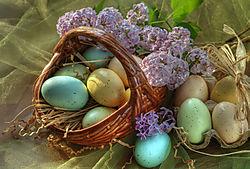 egg_basket_bracketed_photo.jpg