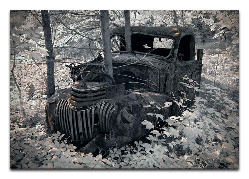 The forest has outlived this Chevy pick-up truck and is now in the process of absorbing it. Image was taken with a Nikon D100 converted to Infrared imagery and then both contrast and brightness were increased in Photoshop CS3.