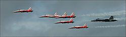 Tiger_II_s_escorting_Hornet_Swiss_Air_Force_.jpg