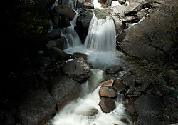 Cascade_Creek-21.jpg