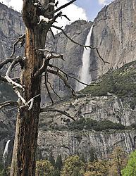 Yosemite_Wksp_699_May_2010.JPG