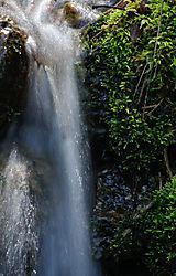Todd_Jackson_Yosemite-7357.jpg