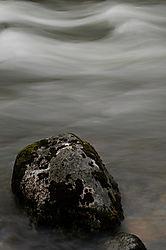 Todd_Jackson_Yosemite-7597.jpg
