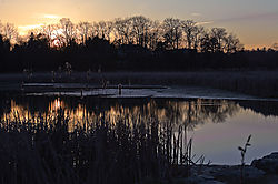 Rouge_park_at_sunset_1_of_1_.jpg