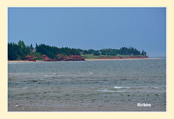 Little-Harbor2.jpg