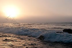 Martha_s_Vineyard_-_Sunrise_Sunset-10.jpg