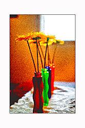 DSC0441_flowervases_bdr.jpg