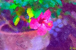 hibiscus_impress_sm.jpg
