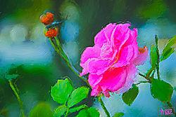 rose_paint.jpg