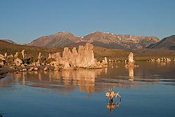 Mono_Lake2.jpg