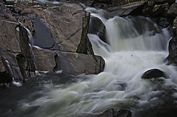 Into_The_Sinks_Little_River_Smokey_Mountains_.jpg