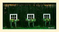 12017Barn-Flower-Boxes.jpg