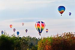 Balloon_Fes_-193.jpg