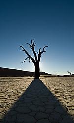 Namibia_-_Deadvlei.jpg