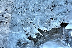 Winter_20120205_0017_tm.JPG