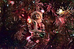 Santa_Bear.jpg