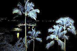 Hilo_Hawaiian_Hotel_456am.jpg