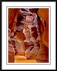 Antelope--8654.jpg