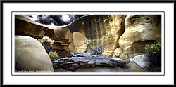 Escalante_Wilderness-9979.jpg