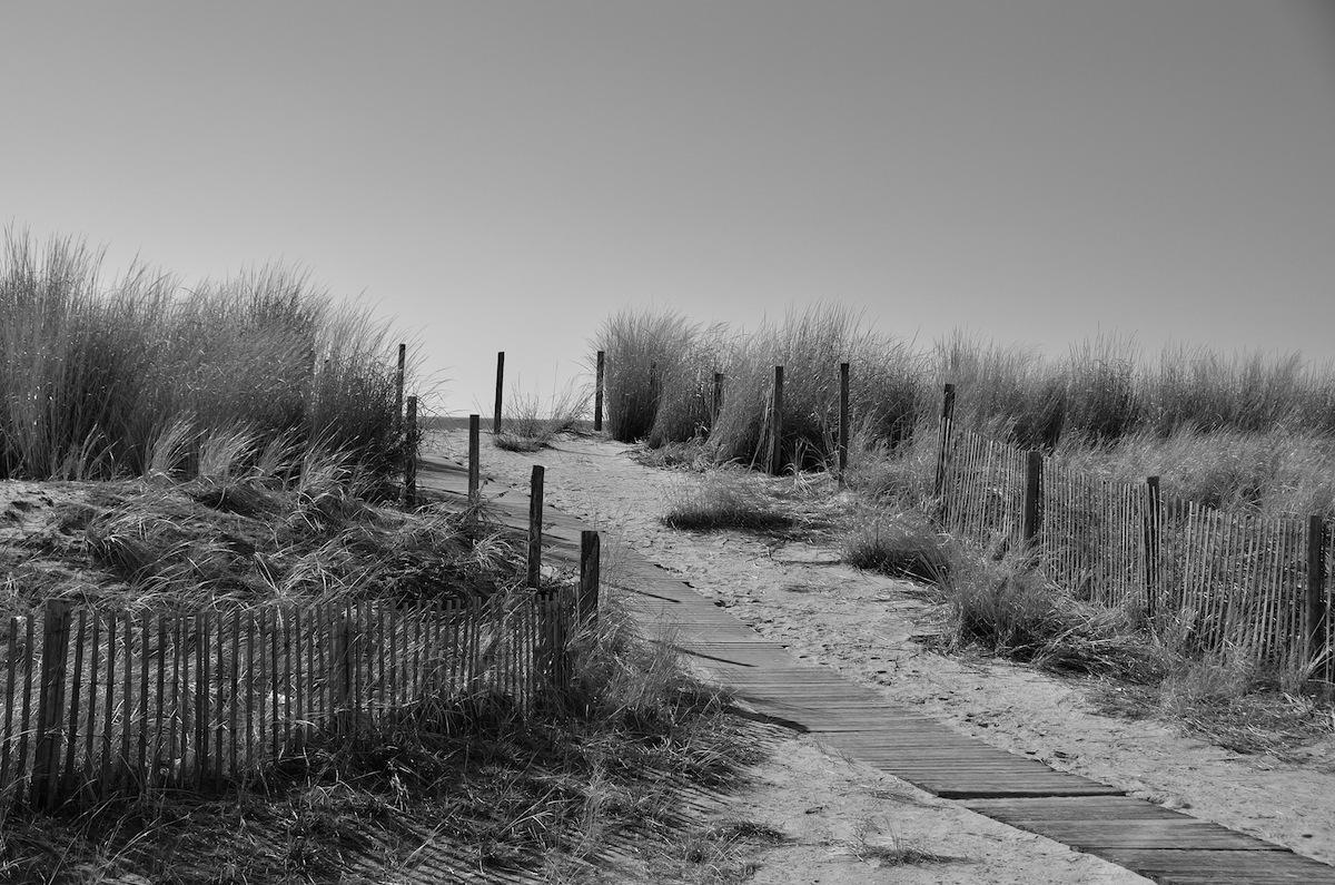 dune_1